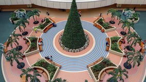 Christmas tree at Orlando International Airport is up greeting travelers