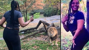 New York woman in Bronx Zoo lion enclosure stunt that went viral arrested on criminal trespass charge