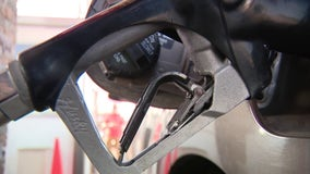 AAA: Florida gas prices rising, jumped ten cents since last week