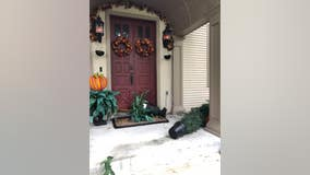 VIDEO: Bear ransacks front porch after woman leaves out apple cider vinegar
