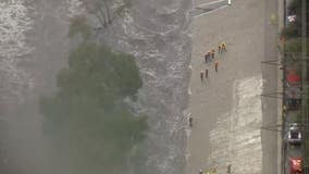 Man rescued after spotted clinging to tree in LA River