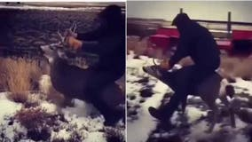Man, 18, arrested for 'disturbing video' showing him riding trapped mule deer