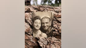 DeLand woman tries to return missing photo to owner