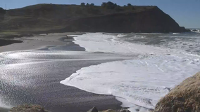 California coastal waters are acidifying twice as fast as global average
