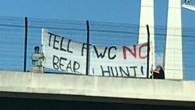 'No bear hunt': Protestors hang banner over I-4 against having another bear hunt