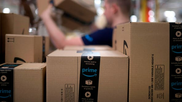 'Do you have a ladder I can use?': Ring camera captures Amazon driver's 'crazy' delivery