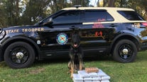 K-9 sniffs out approx. $1.2 million in cocaine hidden inside woman's car