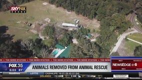 Several animals removed from pet sanctuary
