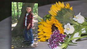 California boy, 11, reported missing has been found dead