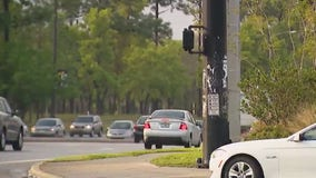 Crosswalk crackdown: Extra patrol out in Orlando to promote pedestrian, bicycle safety