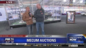 David Does It: Mecum Auctions