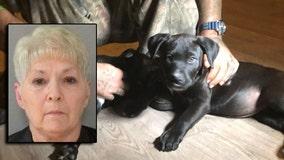Flagler County woman shot neighbor and puppy with BB gun, deputies say