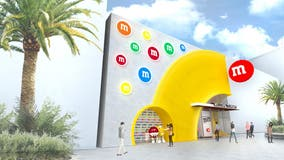 Preview: 'Immersive' and 'fun' M&M's store moving to Disney Springs