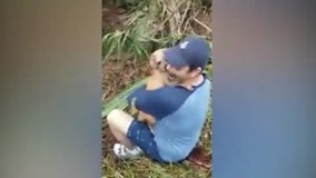 Dog who ran away after crash reunited with owner