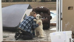 Heartwarming photos shows dog reunited with owner after EF-2 tornado destroys home