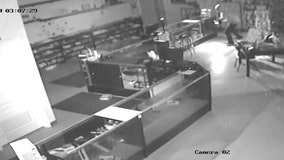 Gun store thefts investigated by FDLE as new gun store bill considered