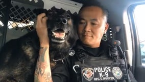Florida K-9 retires on his birthday, officers pay tribute with heartwarming final sign-off
