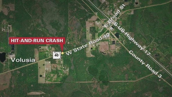 Deadly hit-and-run in Volusia County