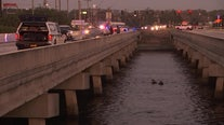FHP: 1 dead, 3 injured after crash sends car into Tampa Bypass Canal