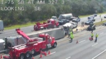 FHP: Tractor-trailer with cows inside overturns on I-75 northbound near Wildwood