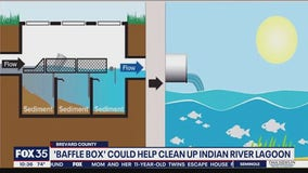 Baffle Box could help clean up Indian River Lagoon