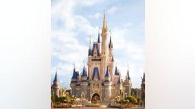 Visitors react to Disney theme parks temporarily closing