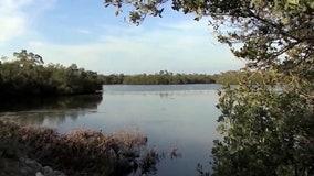 President Trump's budget plan calls for $250M for Florida Everglades