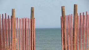 New fence along A1A in Ormond-by-the-Sea faces both criticism and praise