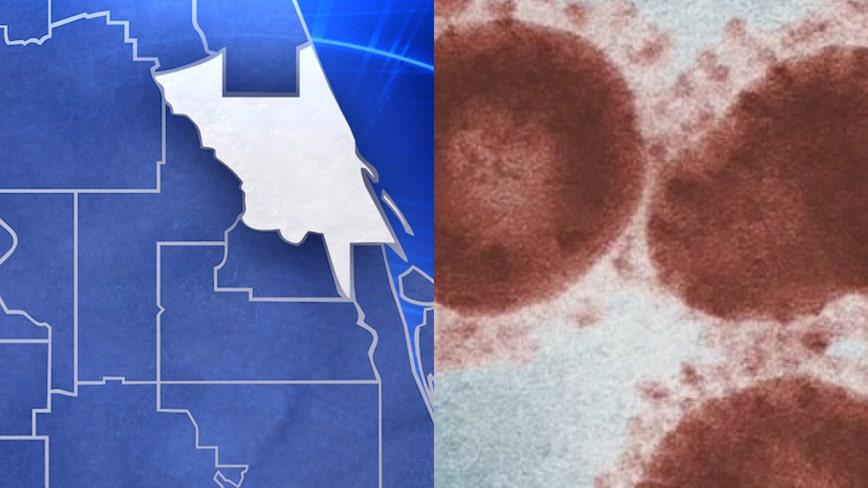 2 coronavirus testing facilities coming to Volusia County, Florida representative says