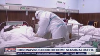 Coronavirus could become seasonal like flu