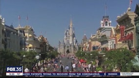 David Does It: The status of theme parks