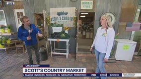 David Does It: Scott's Country Market
