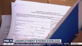 Unemployment system overload