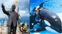 State signs off reopening of Disney World, SeaWorld