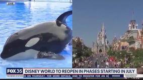Orange County approves plans to reopen Disney, SeaWorld