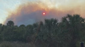 'Fox Fire' in Titusville burns at least 750 acres, Florida Forest Service says