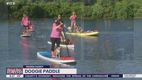 David Does It: Doggie Paddle