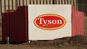 555 coronavirus cases at Iowa Tyson pork plant
