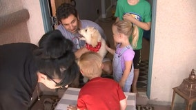 Non-profit gives Nevada boy with Down syndrome a service dog to help him become more independent