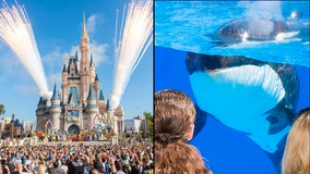 Disney, SeaWorld to present reopening plans to Orange County Task Force