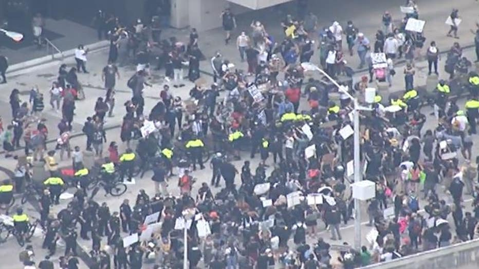 ProtestAriels5.jpg