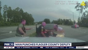 Man arrested after punching deputy, sheriff says
