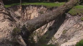 Massive 40-foot by 20-foot sinkhole opens up in Central Florida yard