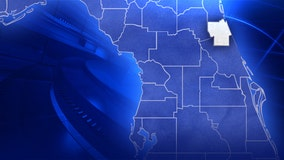 Flagler County Primary Results