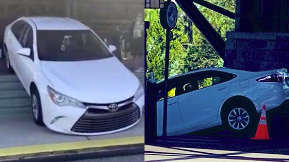 Vehicle spotted driving down stairs near front lobby of 'Wilderness Lodge' at Walt Disney World