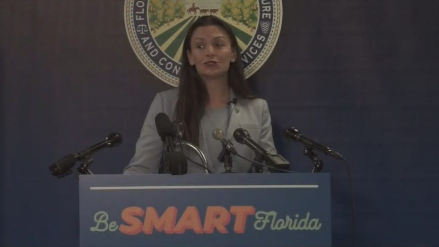 Florida Dem. launches 'Be Smart Florida' campaign, urging residents to wear masks and social-distance