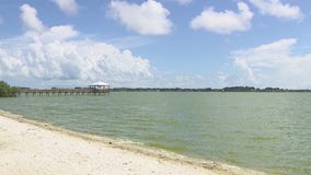 Another algae bloom, fish kill reported in Indian River Lagoon