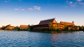 Disney World's Polynesian resort to be remodeled, take inspiration from 'Moana'