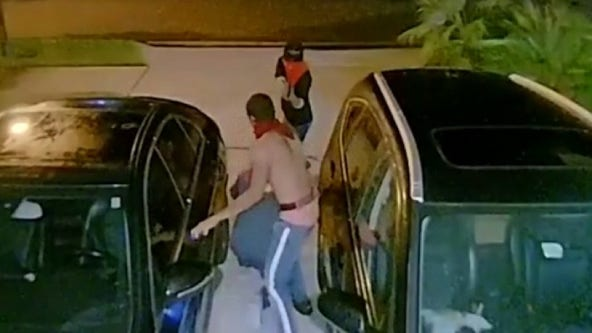 VIDEO: Orange County deputies search for carjacking suspects