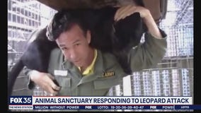 Animal sanctuary responds to leopard attack